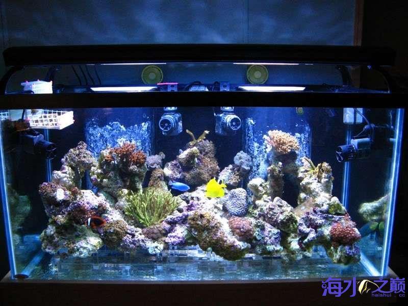 好过滤系统应该具备哪些条件 西安观赏鱼信息 西安博特第4张