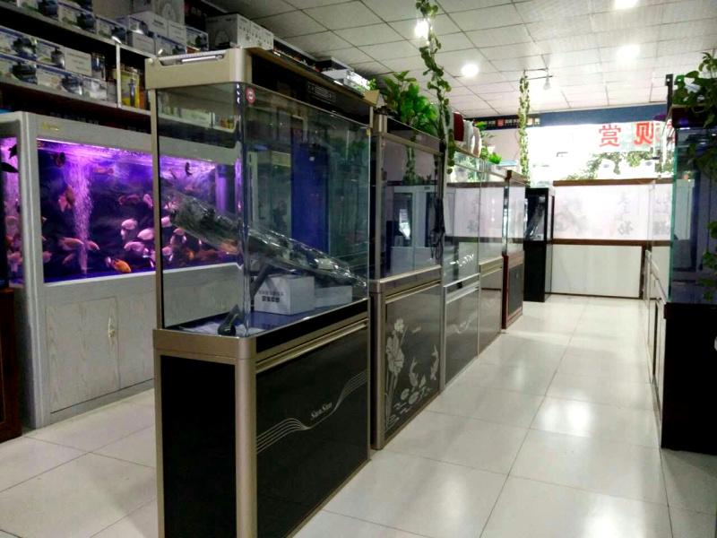 中国七大水族馆里面所有的观赏鱼都有美轮美奂 西安龙鱼论坛 西安博特第6张