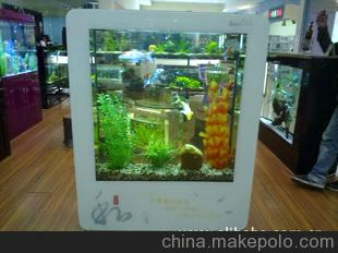 【西安大型观赏鱼缸】我的鱼偶尔擦拭水桶会生病吗? 西安观赏鱼信息