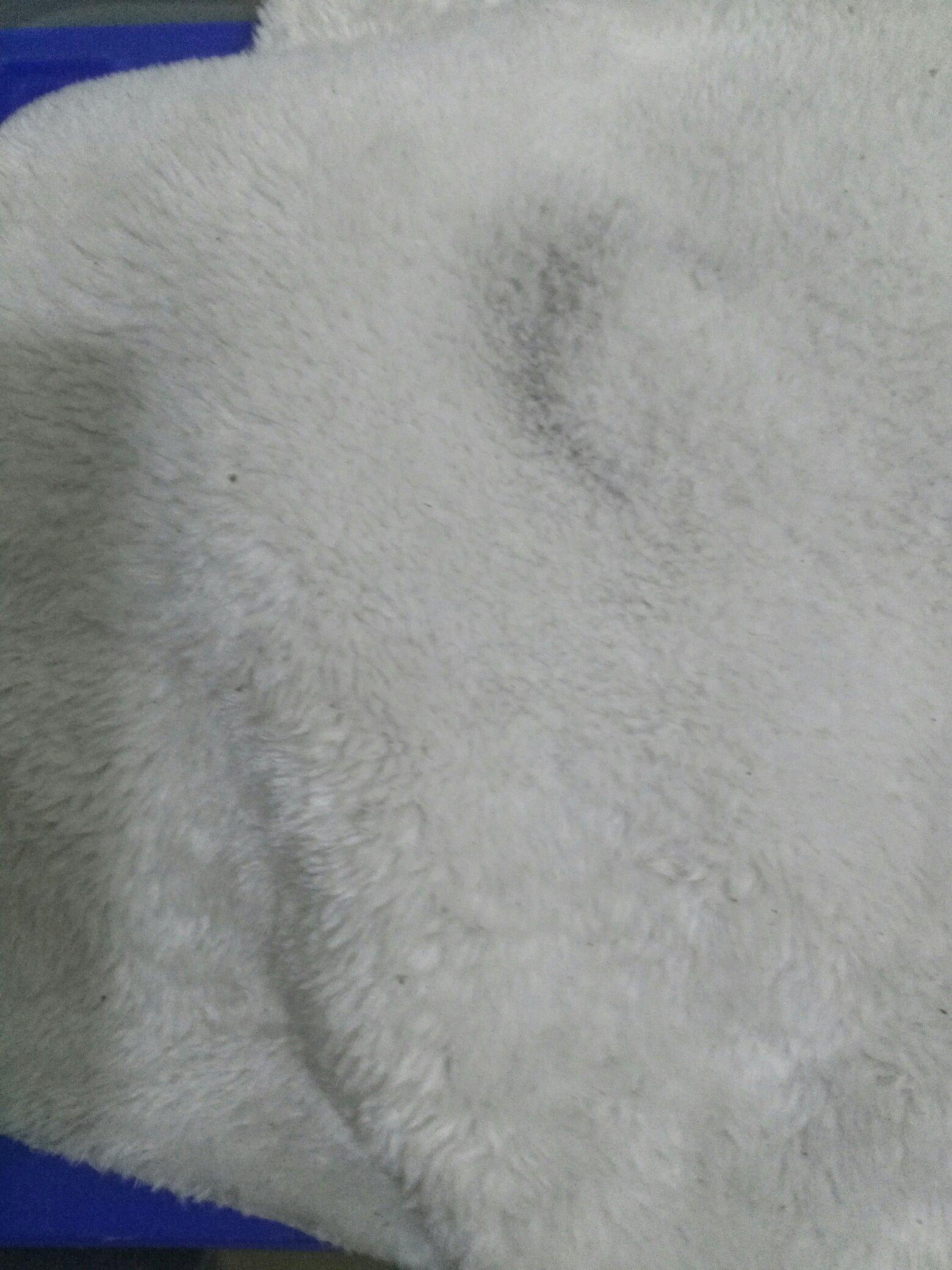 【西安泰虎】关于昨天洗衣机洗棉布 西安观赏鱼信息 西安博特第4张