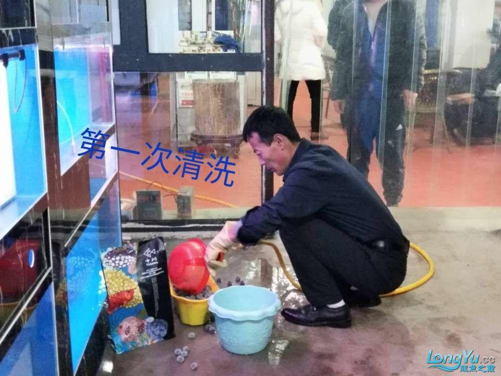 十川滤材试用报告 西安龙鱼论坛 西安博特第12张