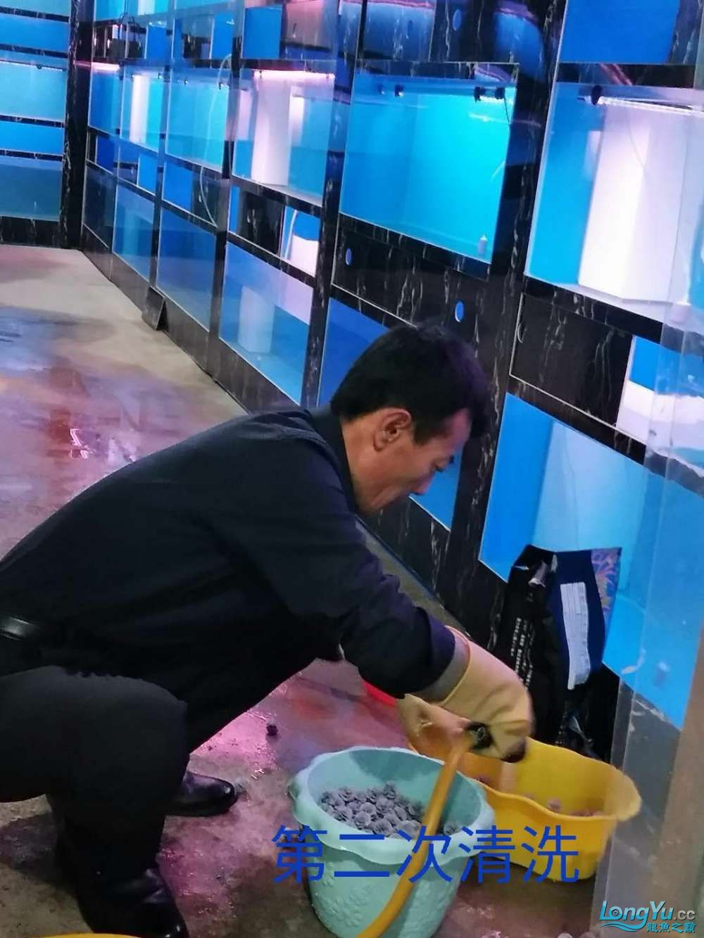 十川滤材试用报告 西安龙鱼论坛 西安博特第13张