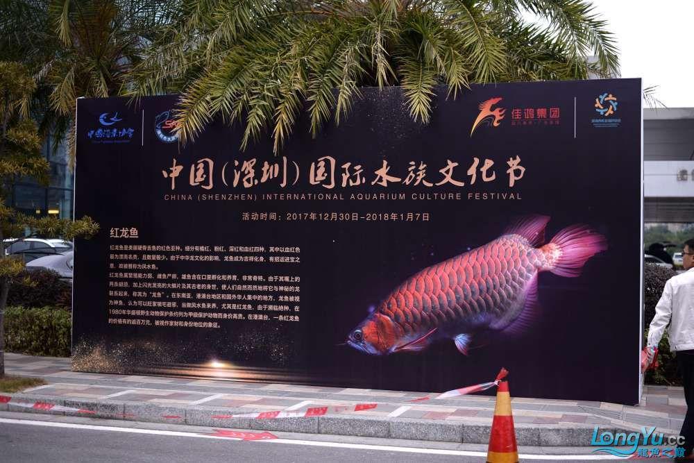 中国深圳国际水族文化节