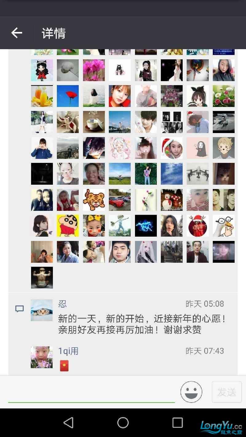 新年愿望广州金麟鱼场33mC里金刚 西安龙鱼论坛 西安博特第5张