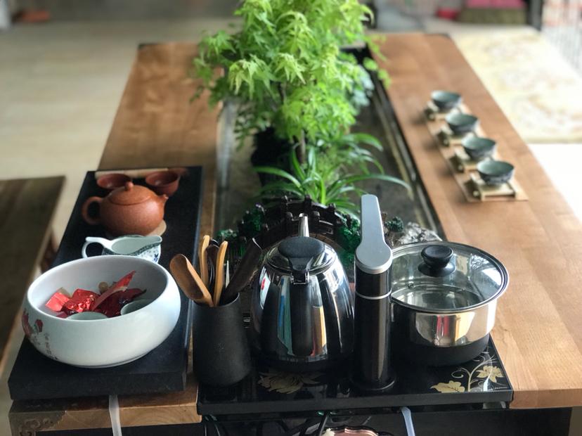 【西安红龙专卖】DIY生态茶几 西安龙鱼论坛 西安博特第7张
