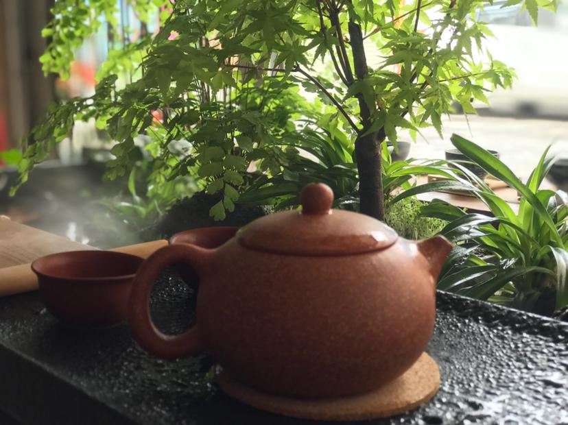 【西安红龙专卖】DIY生态茶几 西安龙鱼论坛 西安博特第5张
