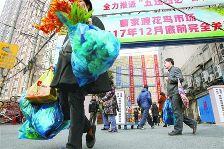 【西安红龙专卖】DIY生态茶几 西安龙鱼论坛 西安博特第10张