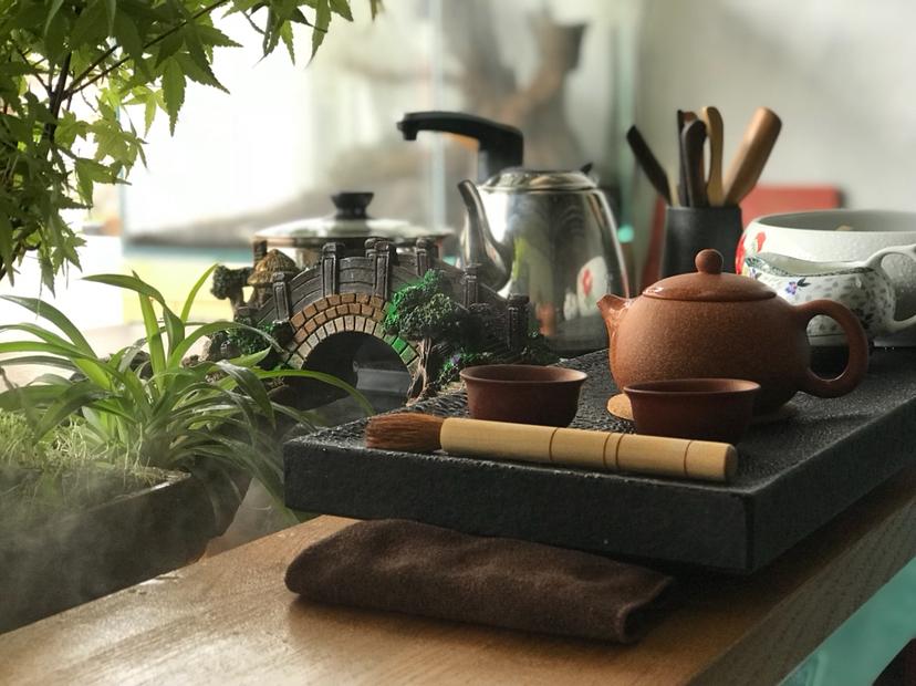 【西安红龙专卖】DIY生态茶几 西安龙鱼论坛 西安博特第9张