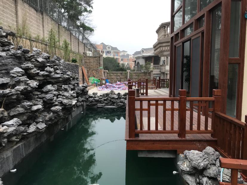 【西安三纹虎】非常可惜的一个鱼池 西安龙鱼论坛 西安博特第2张