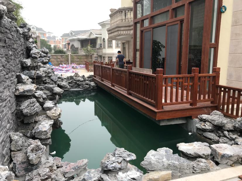 【西安三纹虎】非常可惜的一个鱼池 西安龙鱼论坛 西安博特第5张