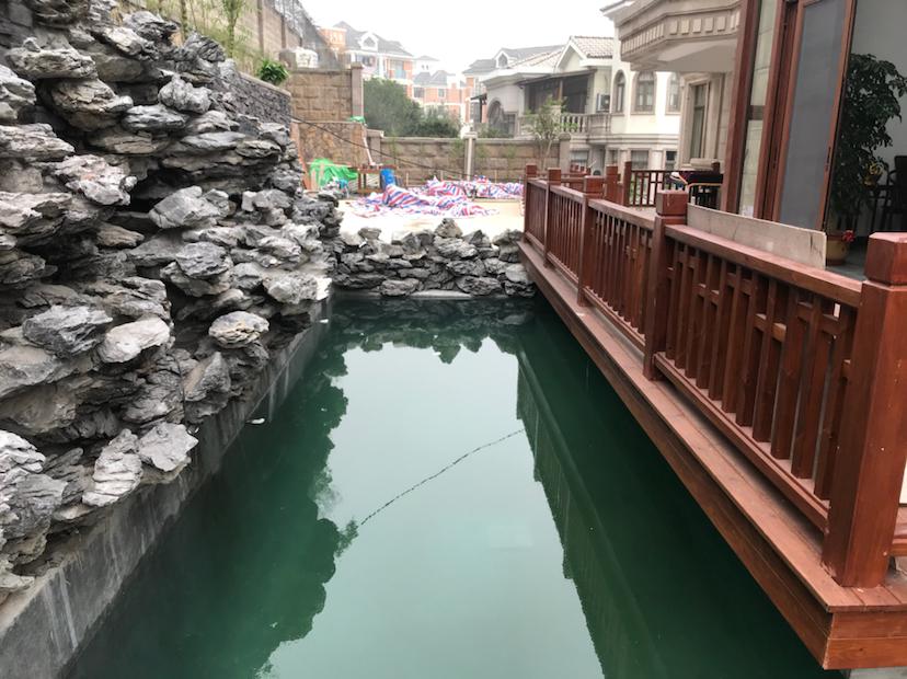 【西安三纹虎】非常可惜的一个鱼池 西安龙鱼论坛 西安博特第7张