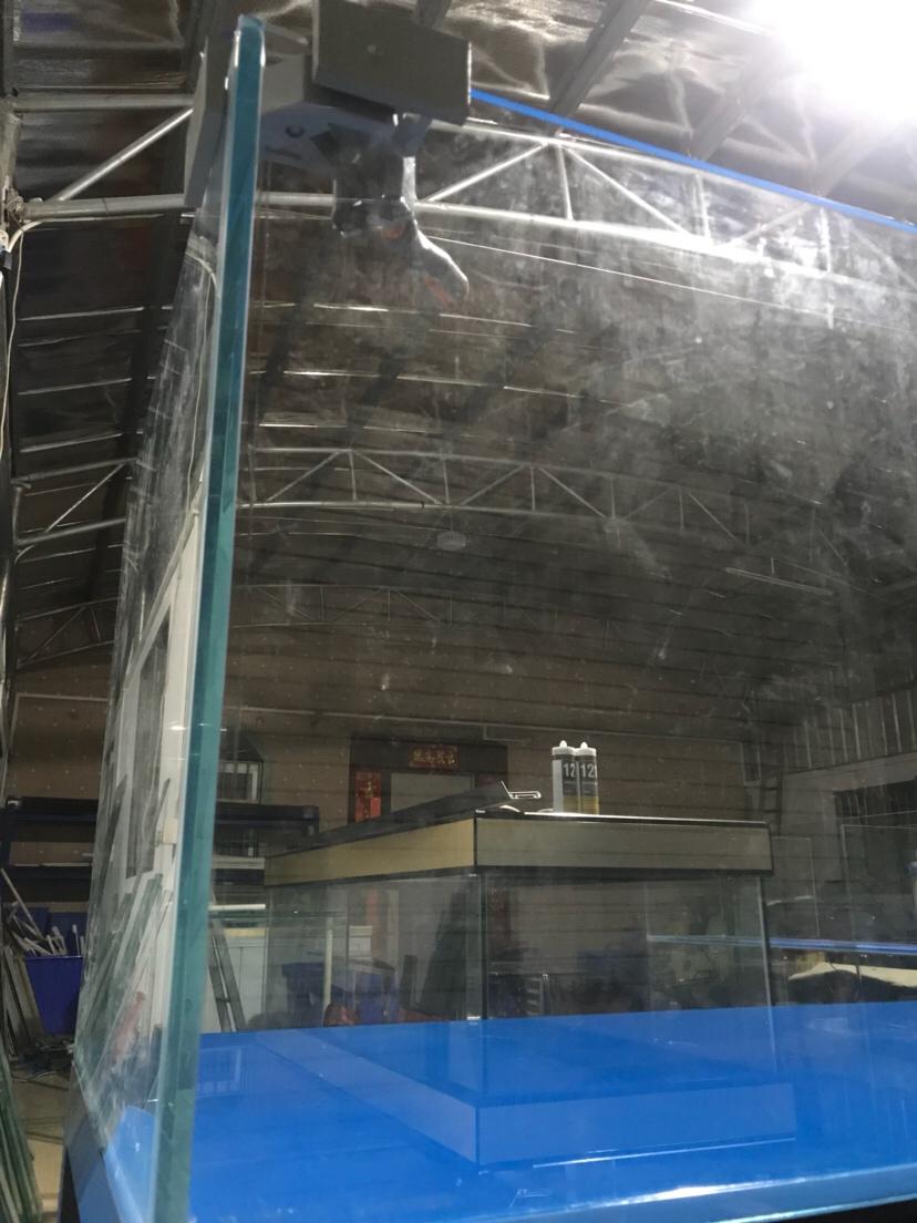 3000800650超白水草缸搞起 西安龙鱼论坛 西安博特第2张
