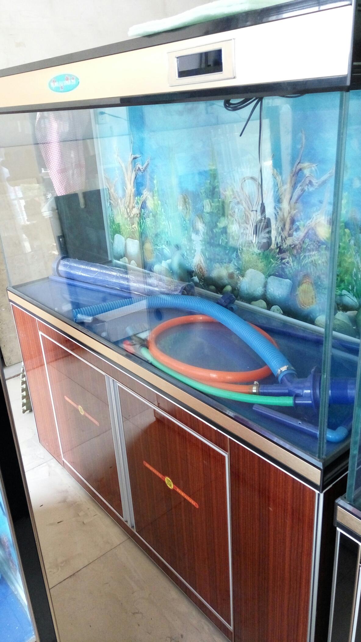 这几种颜色哪种可以 西安龙鱼论坛 西安博特第3张
