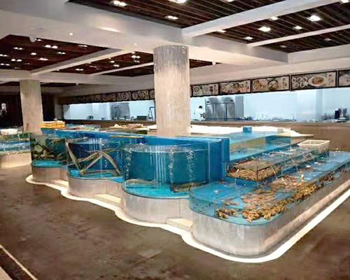 【西安黑白皇冠魟鱼】养鱼就是折腾 西安观赏鱼信息 西安博特第5张