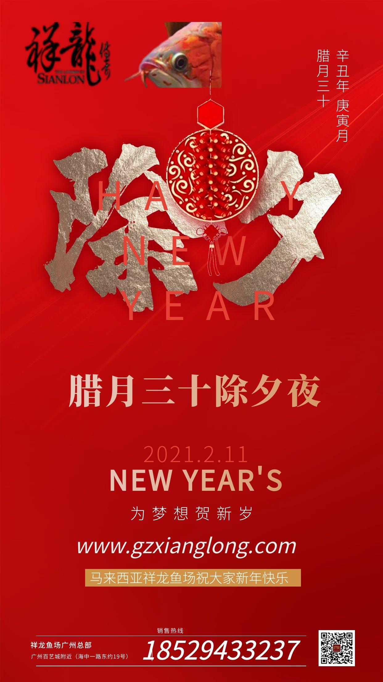 西安琉璃祥龙水族馆恭贺本市鱼友新春快乐祝福2021 西安水族馆信息 西安博特第3张
