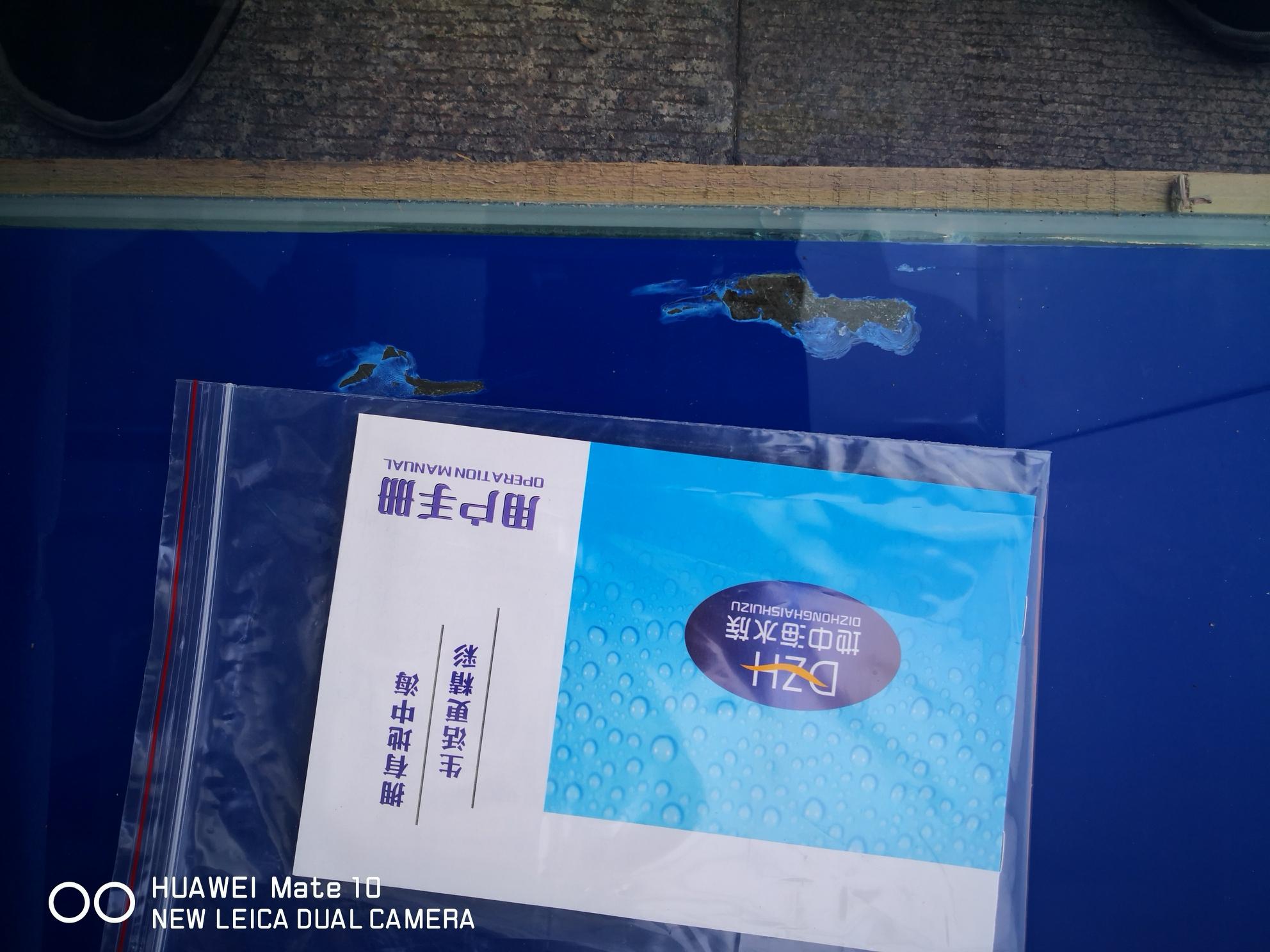 【西安花鸟鱼市】地中海水族 西安观赏鱼信息 西安博特第5张