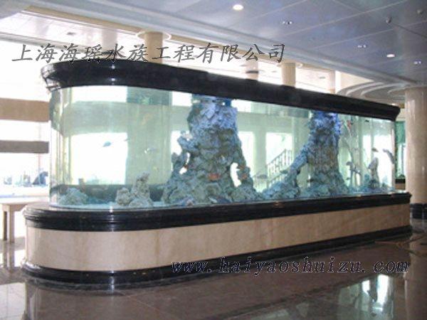 新进小皇冠 西安观赏鱼信息 西安博特第2张