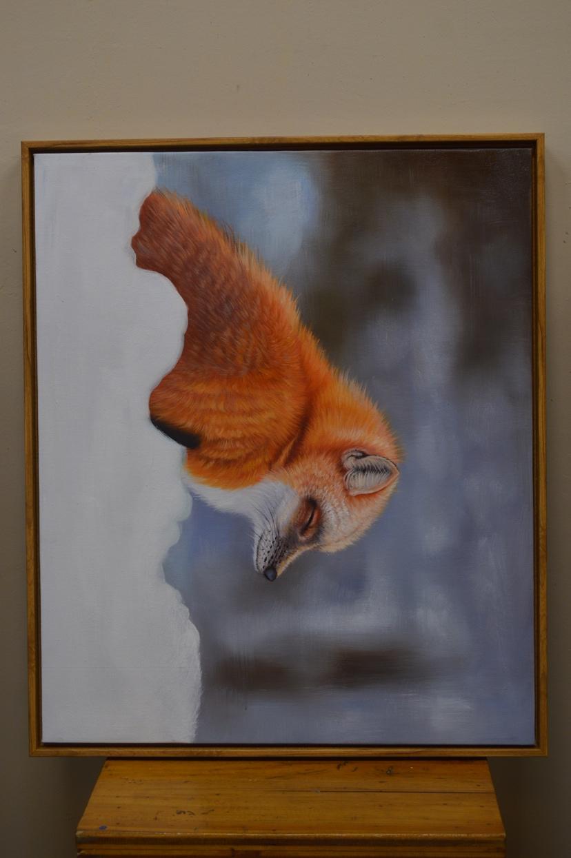 大叔爱艺术 西安观赏鱼信息 西安博特第4张
