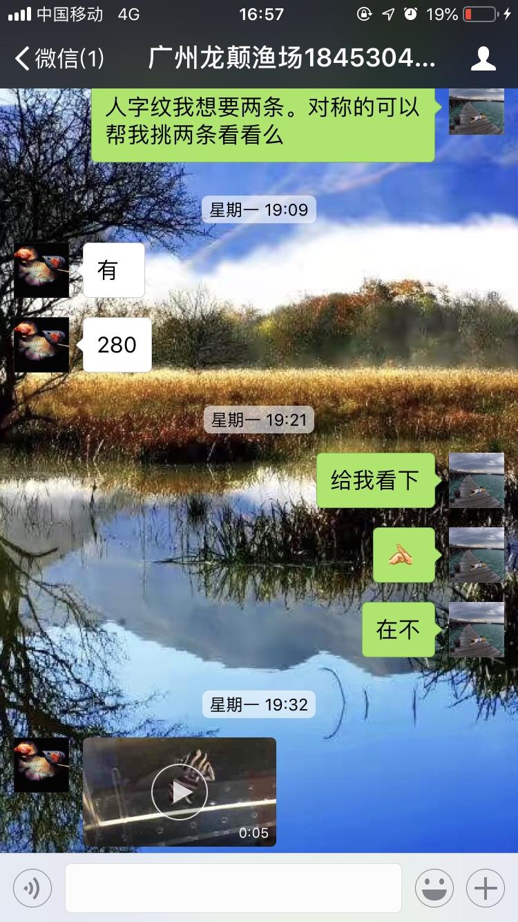 【西安海水鱼批发】小心这个是骗子广州龙巅渔场 西安龙鱼论坛 西安博特第3张