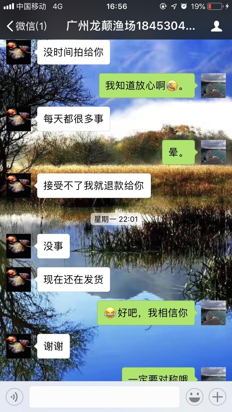 【西安海水鱼批发】小心这个是骗子广州龙巅渔场 西安龙鱼论坛 西安博特第5张