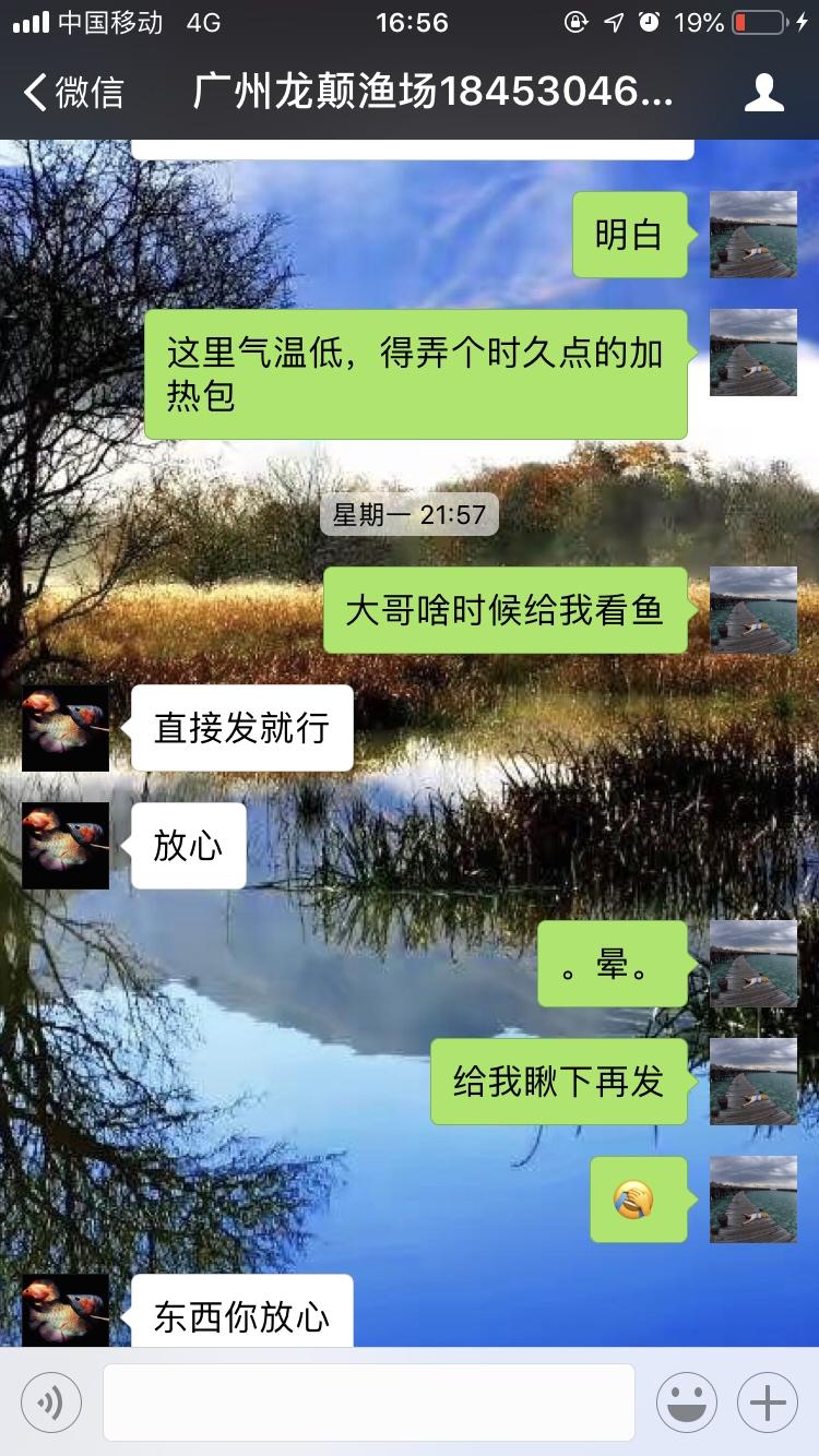 【西安海水鱼批发】小心这个是骗子广州龙巅渔场 西安龙鱼论坛 西安博特第6张